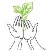 -hands-holds-a-living-green-plant-seedling-continuous-line-drawing-vector-illustration